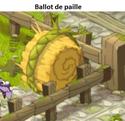 Indices Chasse aux trésors et Portail. Balot_10