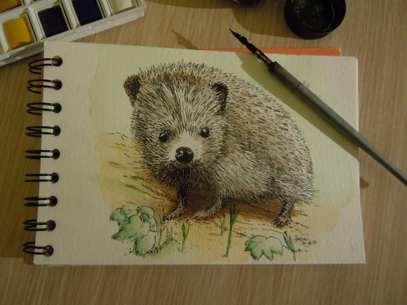 Illustrations d'Haelored Heriss10