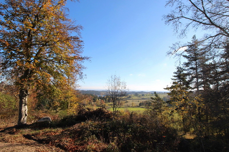 12-30-48 Aveyron-Gard-Lozère saison 2017/2018 - Page 3 Img_7516