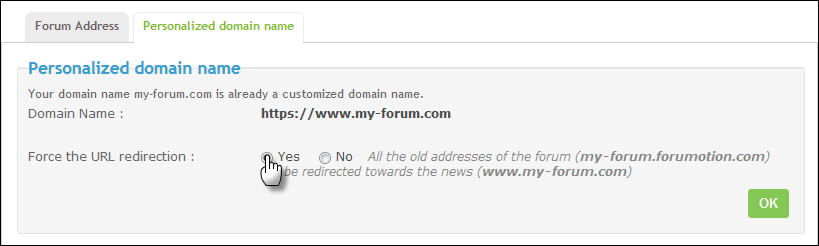 Custom Your Domain Name Domain11
