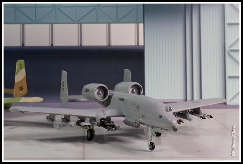 QA-10 UCAS & IAF A-10D Thunderbolt _mg_0035