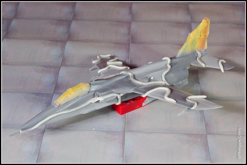 Un Jaguar Marine aux ailes... _mg_0076