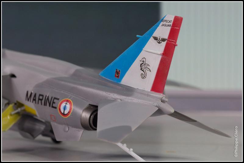 Un Jaguar Marine aux ailes... Img_0023