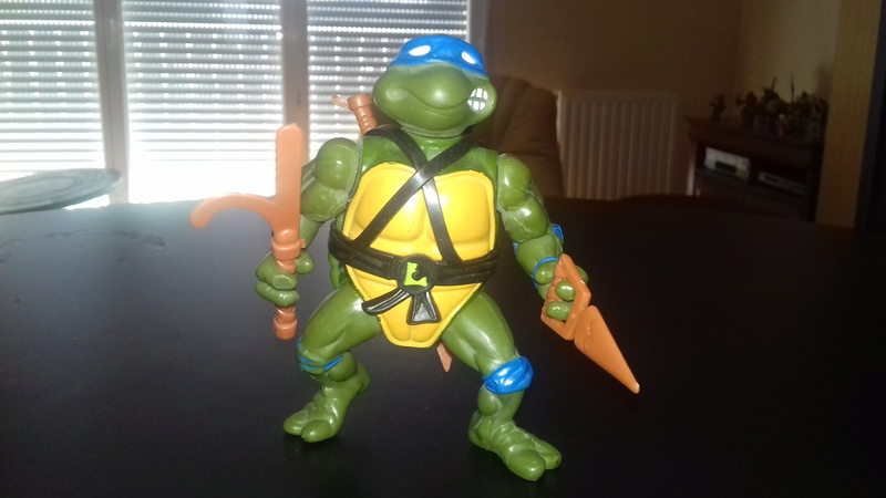 Ma collection Tortues Ninjas vintage 20180335