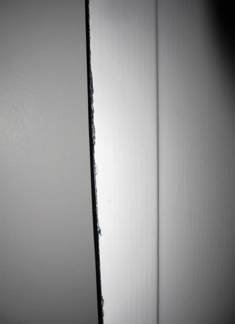 [VENDUE] Spleene Door 159*45 2012 + housse - 300 € Img_0420