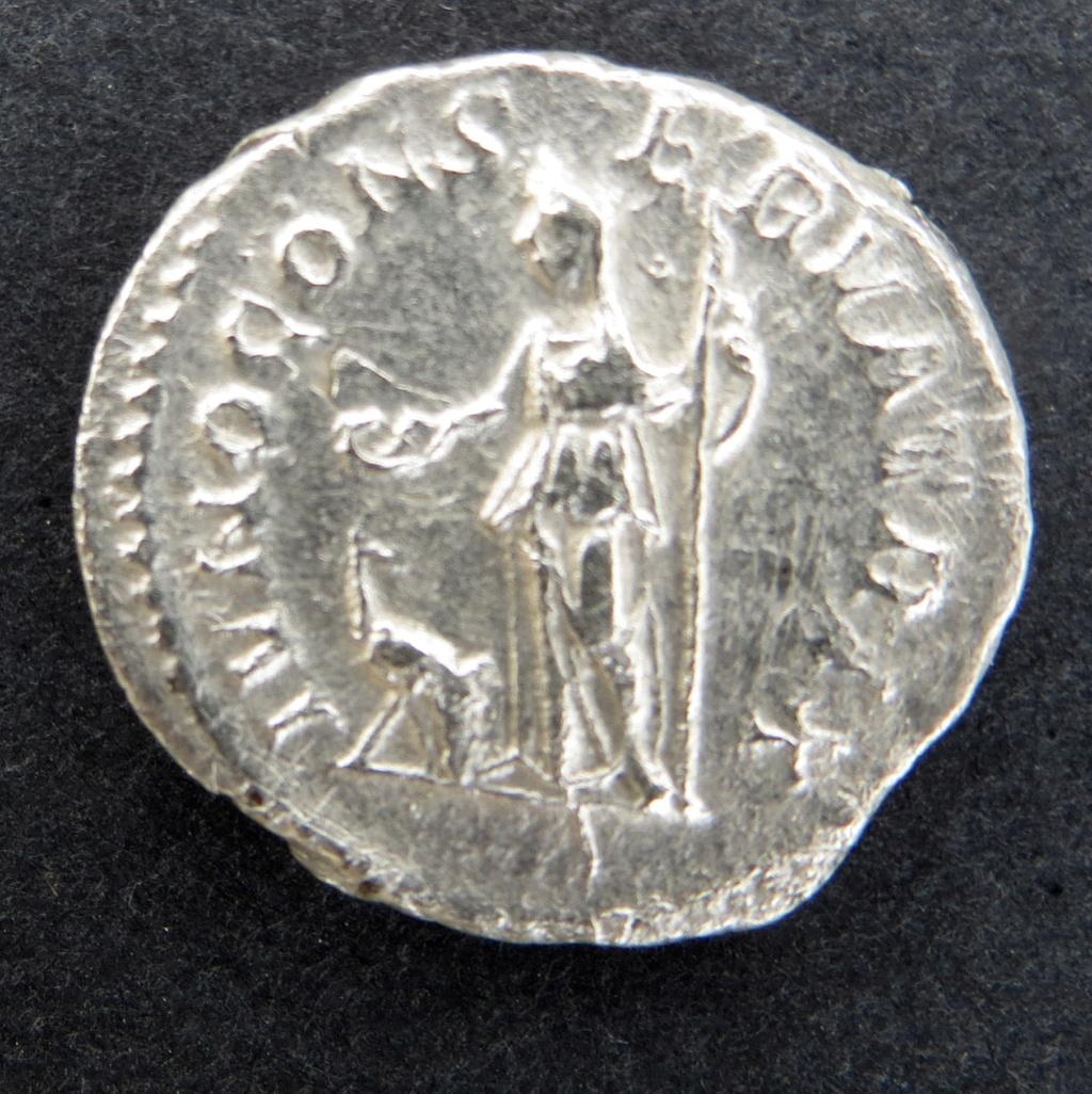 denarius argenteus Mamaea11