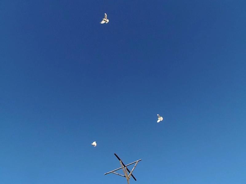 Бакинские голуби - Страница 3 Image11