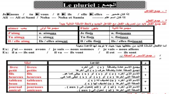 اخطر مراجعة لغة فرنسية للصف الثالث الثانوى في 50 ورقة pdf 00010