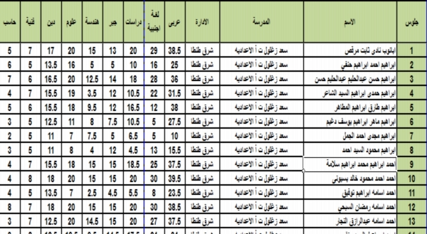 نتيجة اعدادية محافظة الغربية 2018 ملف Excel بالاسم ورقم الجلوس 01140
