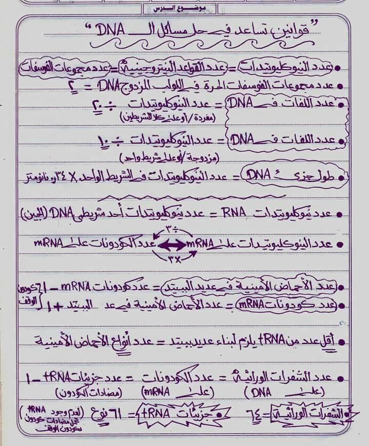 قوانين مهمة لحل مسائل dna + مذكرة مسائل شاملة للثالث االثانوي 01161