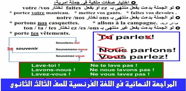 مراجعة فرنساوى ثالثة ثانوي في ٣٠ ورقة فقط 01202