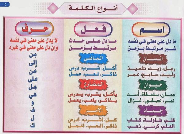 أنواع الكلمة في اللغة العربية 1573