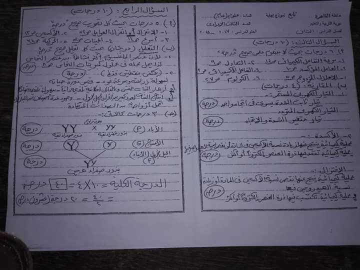 نموذج إجابة امتحان العلوم بتوزيع الدرجات للصف الثالث الاعدادى محافظة القاهرة ترم ثاني 2018 2983