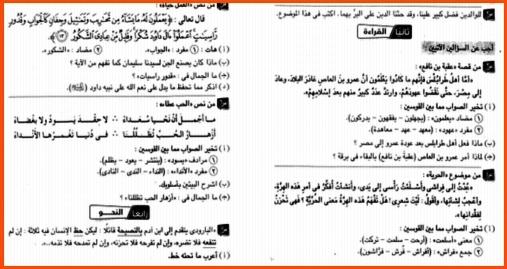 عشرون امتحان لغة عربية للصف الاول الاعدادى تدريب لامتحان نصف العام 2019 918
