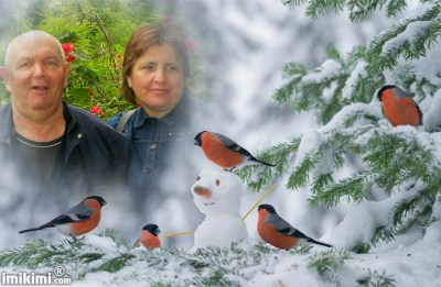 Montage de ma famille - Page 5 2zxda-47