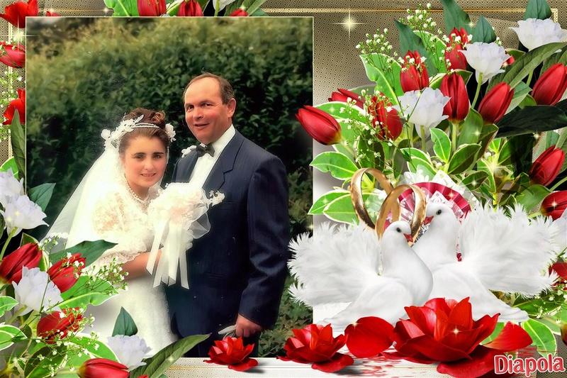 Montage de ma famille - Page 6 Diapol39
