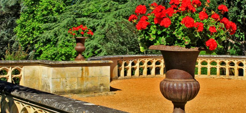 Les milandes , le chateau de Josephine Baker Jardin11