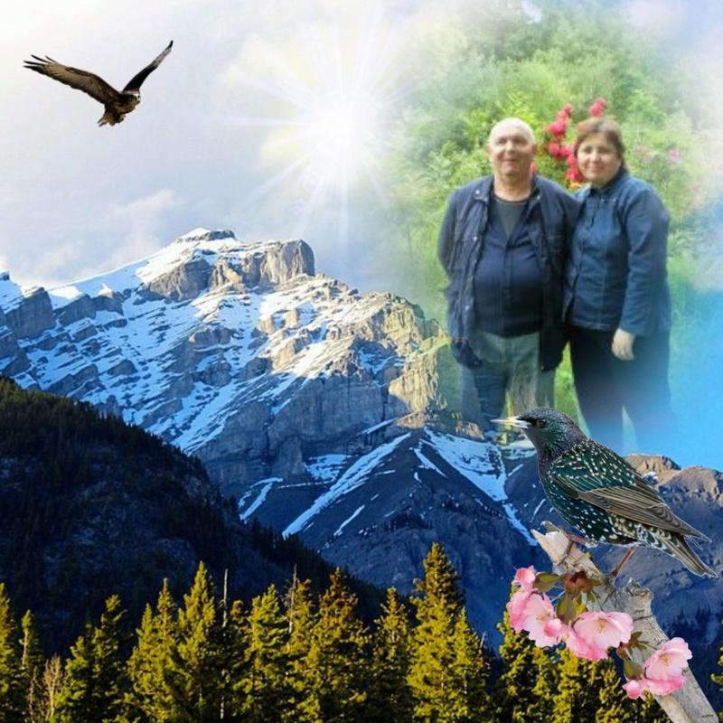 Montage de ma famille - Page 7 Photos42