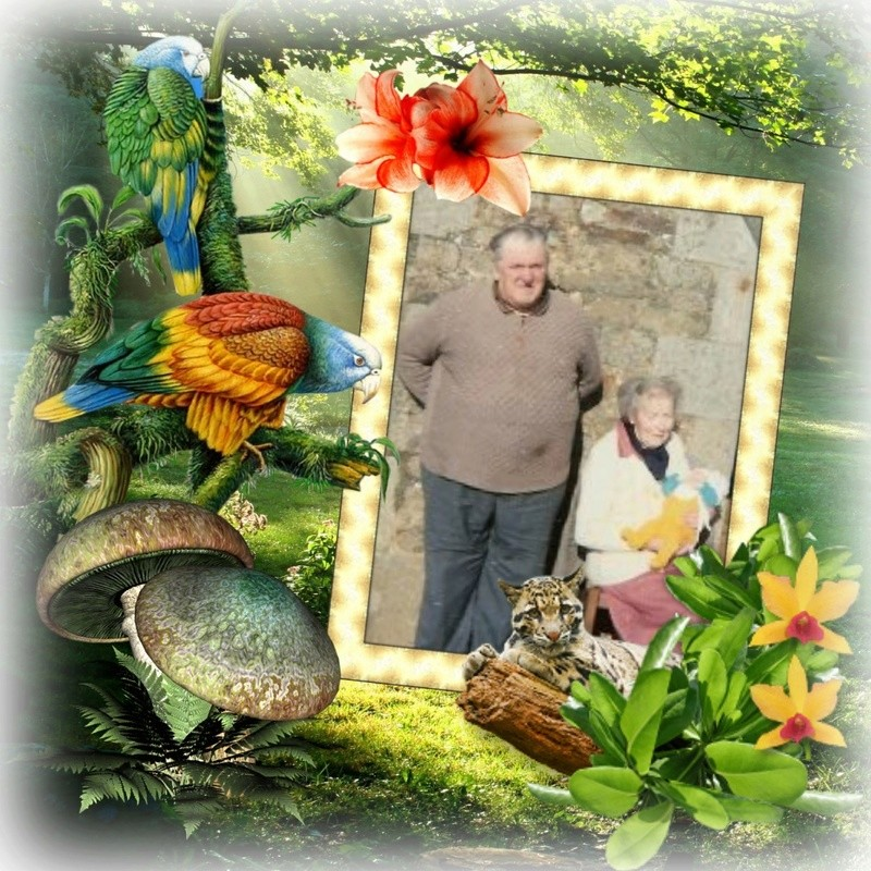 Montage de ma famille - Page 7 Photos47
