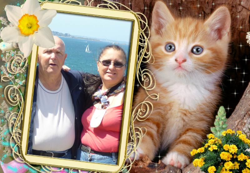 Montage de ma famille - Page 6 Vipta175
