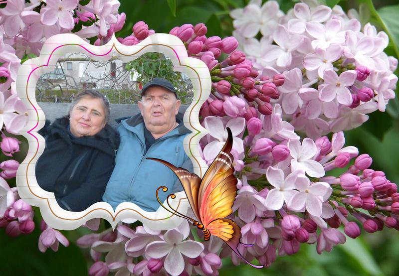 Montage de ma famille - Page 6 Viptal75