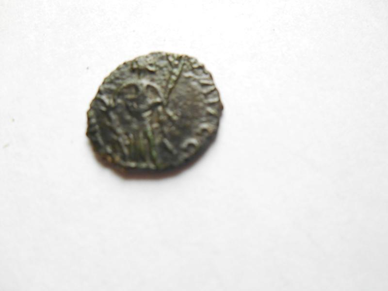 id petit romaine 00713