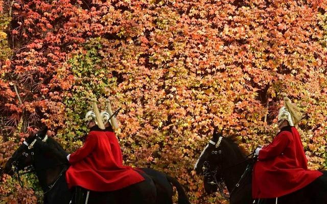 Photos d'automne - Page 6 11327411