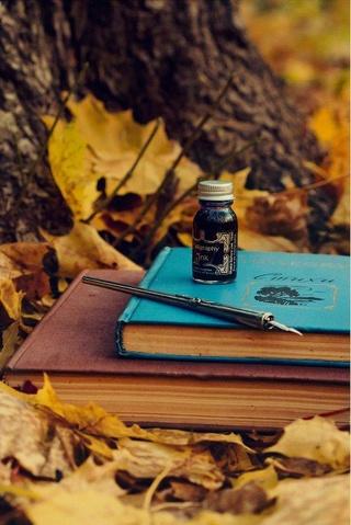 Photos d'automne - Page 5 22089311