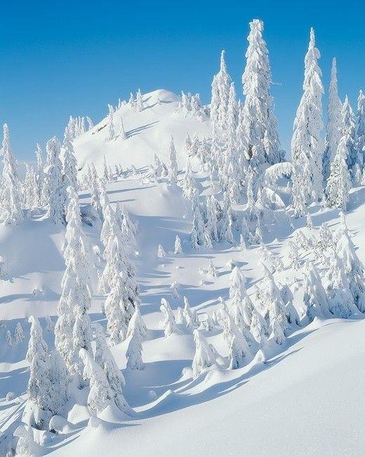 Photos d'hiver  - Page 4 23b06a10