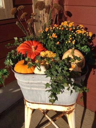 Photos d'automne - Page 5 456b3710