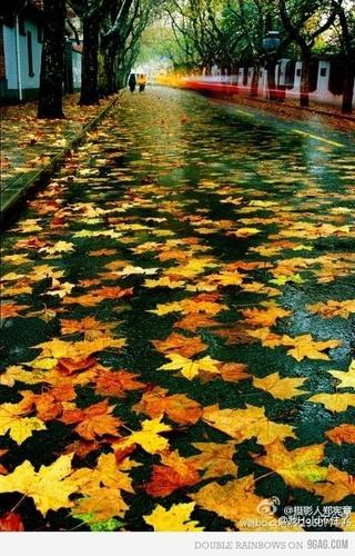 Photos d'automne - Page 3 B42e2110