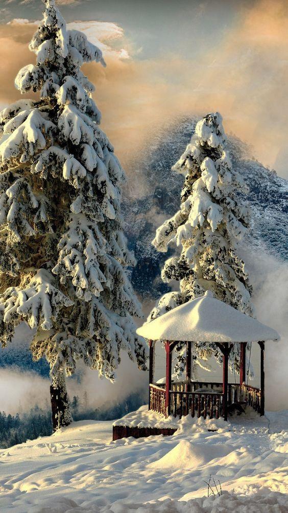 Photos d'hiver  - Page 9 B80a4a10