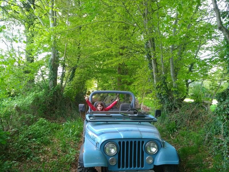 jeep cj 4.2 l - Page 4 Img_2086