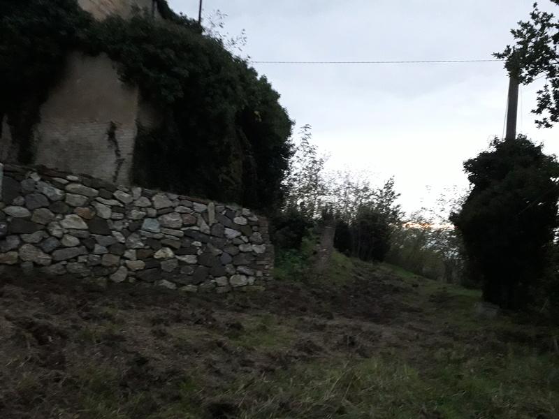 Toiano 20181213