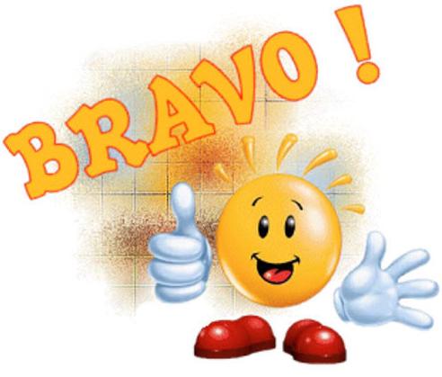 Championnat de France 2018 à Saint Martin le Beau - Page 2 Bravo_10