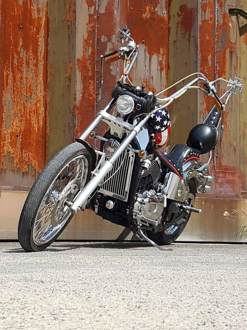 800 - chopper vn 800 vu sur le net  18527310