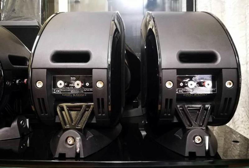 Focal - JM Lab SIB Speakers, 5pcs Focal110