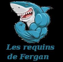 Championnat de Polo Lédonien 2018-2019 Requin12