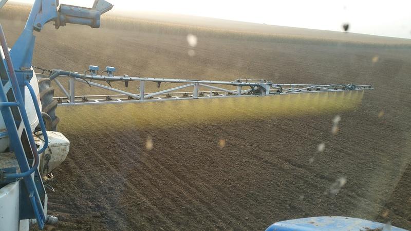 desherbage blé 20171021