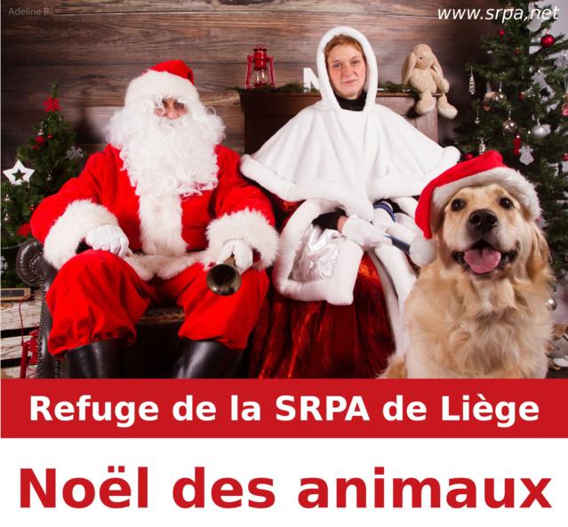 Noël des Animaux et Marche aux Flambeaux (9 décembre 2018) Noel2010