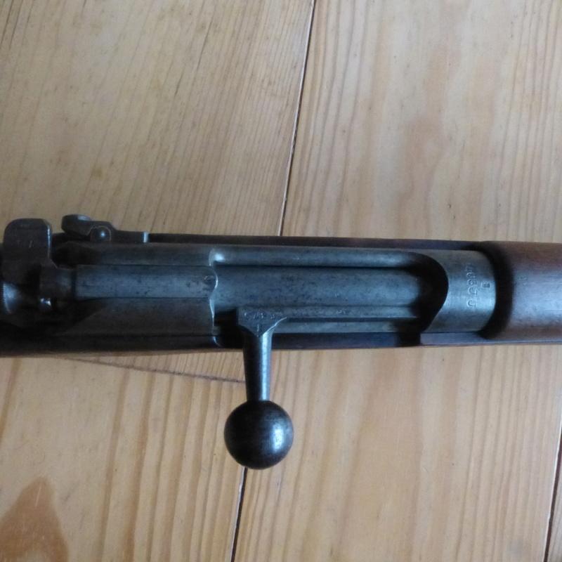 dutch steyr HEMBRUG 1917 P1000811