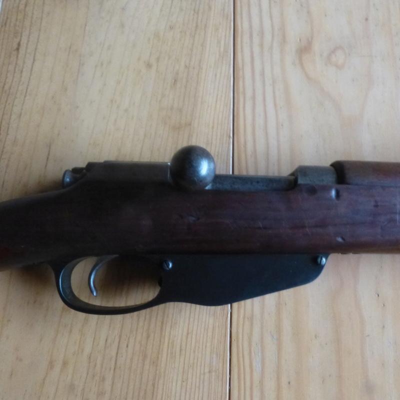 dutch steyr HEMBRUG 1917 P1000813