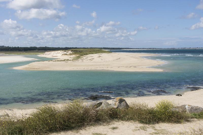 Plouescat : baie de Kernic/PorsMeur/Pors-Guen...  - Page 21 _dsc8510