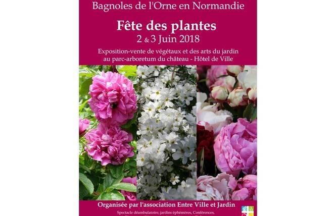 Fête des plantes de Bagnole de l'orne 5917fc10