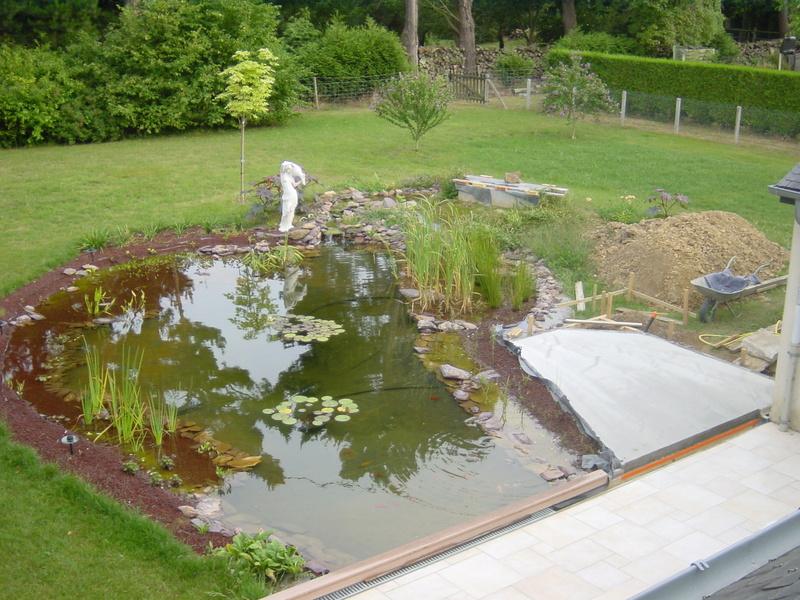 le bassin de logan Dsc02310