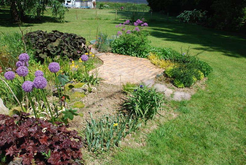 Plantes de mon jardin - Page 2 Dsc_2011