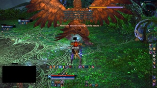 Gorge vorace 133
