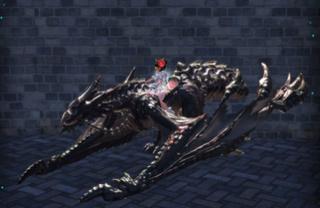 Les skins des montures Dragon19