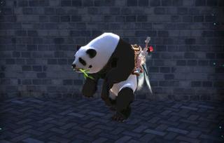 Les skins des montures Panda_11