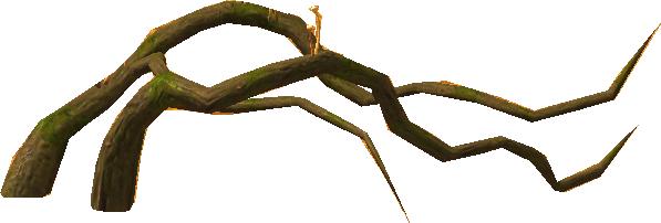 Les plantes Sylva10